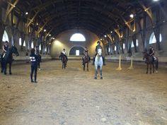 Première semaine de rentrée pour les stagiaires BPJEPS mention équitation  Pour plus d'infos rendez vous sur : http://www.ifoa.fr/premiere-semaine-de-rentree-pour-les-stagiaires-bpjeps-mention-equitation/