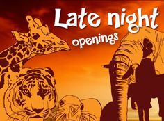 Are you out tonight for Colchester Zoo's late night opening? They are about to start feeding the giraffes :-) #ColchesterZoo #LateNightOpening  http://www.colchester-zoo.com/index.cfm?fa=content.list=552=13