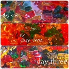 Drunken Gummy Bears.. 3 days soaking in vodka! (Could do with gummy worms and spiders….. more halloween-y than bears) also… it's kind of the same idea as jello shots | best stuff