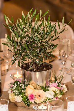 Un #centre de #table typiquement Provençal avec ce petit olivier. Pour un beau…