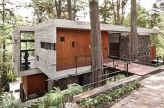 A House Built Around The Trees: Casa Corallo by Paz Arquitectura Photo