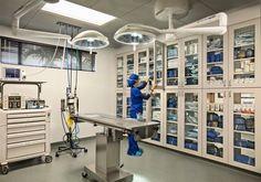 Surgery suite | dvm360.com doorgeefmuur tss operatiekamer en voorbereidingskamer