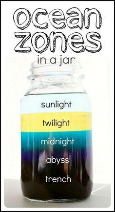 Ocean zones (the layers of an ocean) in a jar