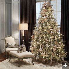 Wow...Would like to do next year on one of the trees