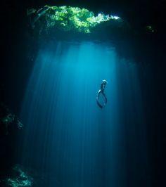 In de categorie duiken er deze foto van het vrij duiken in volledige 'rust', die de 3e plaats gewonnen. Ze werd meegenomen naar de Mexico door Joel Penner