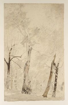 John Downman (Welsh 1750–1824), Trees near Albano. Light Trees, 1774,  graphite, ink and watercolour on paper, 492 x 304 mm, London, Tate