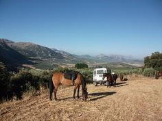 a breakfast picnic ride on the mountain