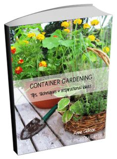 1000 images about creative container gardens on pinterest planters container garden and - Fight weeds with organic solutions practical tips in the garden ...