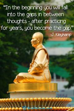 """""""In the beginning you will fall into the gaps in between thoughts - after practicing for years, you become the gap."""" Profound meditation quotes by J.Kleykamp and other teachers at https://bookretreats.com/blog/101-quotes-will-change-way-look-meditation"""