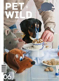 happy birthday dachshund..