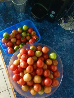 My home grown tomatoes