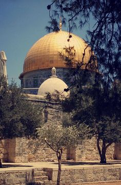 🇵🇸🇵🇸🇵🇸❤❤❤ Palestine History, Palestine Art, Islamic Images, Islamic Pictures, Beautiful Mosques, Beautiful Buildings, Beautiful World, Beautiful Places, Dome Of The Rock