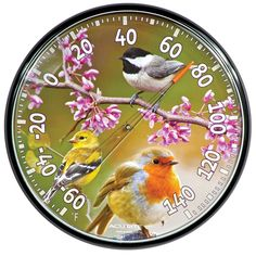 """12.5"""" Perched Bird Thermometer  $14.99 at AcuRite.com"""