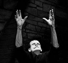 Tumblr Frankenstein 1931, Peter Cushing, Lon Chaney, Dark House, Vincent Price, Film Review, Dracula, Raiders, Filmmaking