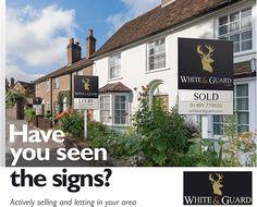 Have you seen the signs. #LeafletDesign #LeafletDesign