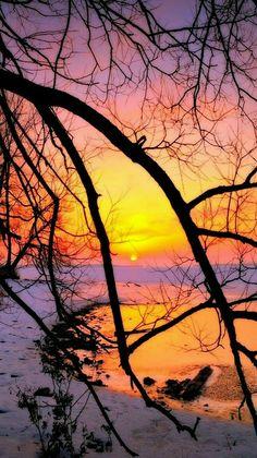Nature - Winter Sunset