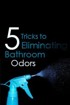 To keep your #Bathroom fresh, follow these simple tips. #ReBath #BathroomTips Bathroom Cleaning Hacks, Cleaning Tips, Household Tips, Facts, Fresh, Simple, Home Hacks, Cleaning Hacks, Cleaning Recipes