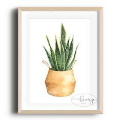 Lola & George - Mother-in-Laws Tongue Print Printed on quality silk card. Available in or size. Unframed - any frames and/or additional items shown in product photos not included. Mother In Law Tongue, A3 Size, Point Of Sale, Plant Decor, A4, Frames, Silk, Printed, Plants