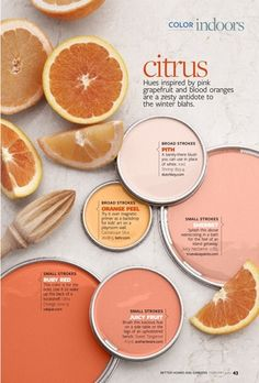 Color_citrus 1.jpg