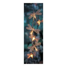 Give your home, patio or garden an additional natural touch with this set of dragonfly string lights from Target Home. Each decorative dragonfly cover is made out of durable metal, and the string of lights is safe for outdoor use. Comes with 10 lights.