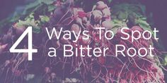 """Four Ways to Spot a Bitter Root  -- REALLY GOOD!  This is just 4 ways... like """"symptoms may include""""  ... It doesn't mean they *all will apply.  Just one or two is enough to know."""
