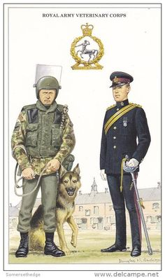 British; Royal Army Veterinary Corps, Lance Corporal Dog Handler, Riot Gear and Captain in Blues.