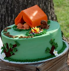 boys camping party cake @Alicia Swofford- do you think you could do something like this for Devon's birthday in March?