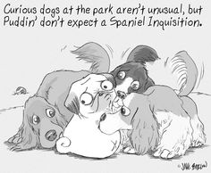 Curious dogs at the park aren't unusual, but Puddin' don't expect a Spaniel Inquisition.
