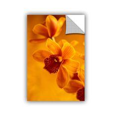 ArtApeelz Golden Cymbidium Orchid by Kathy Yates Photographic Print