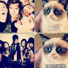 Black Veil Brides VS One Direction