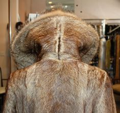 Fur Coat Fashion, Raincoats For Women