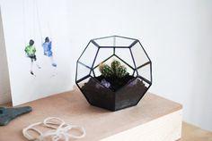 glass terrarium little dodecahedron от boxwoodtree на Etsy, $55.00
