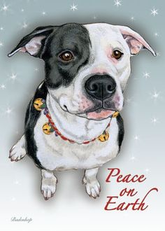 Pit Bull Christmas Cards 6b282c20d