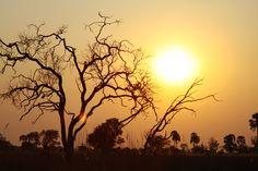 Delta sunset. Mobile Camping - Botswana. #Africa #Travel #safari