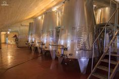 Vinarija Milijan Jelić, tankovi za fermentaciju