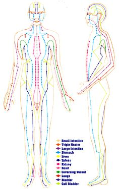554 Best Acupuncture Images In 2019 Acupuncture Points