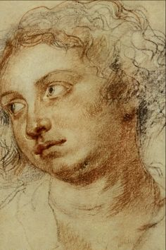 Portrait_of_a_Woman_-_Sir_Peter_Paul_Rubens - trois crayons Peter Paul Rubens, Trois Crayons, Life Drawing, Figure Drawing, Painting & Drawing, Chalk Drawings, Art Drawings, Caravaggio, Beautiful Drawings