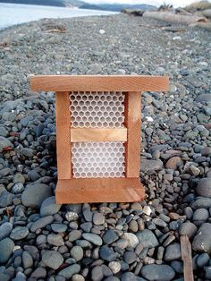A Mason bee home. Orchard bees are great pollinators. DIY bee house instructions from GRIT