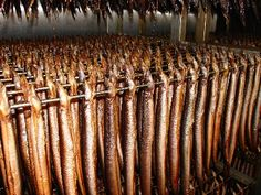 gerookte paling (smoked eel), I remember seeing a women in front of her house with a basket of eels she was skinning