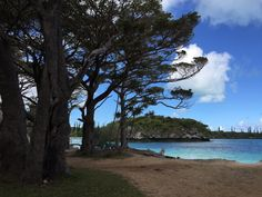 Caminho à beira-mar na Ilha dos Pinheiros (ou Ilha das Pinhas), Nova Caledônia, França.  Fotografia: Giovana Quaglio.