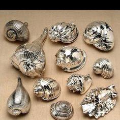 Paint seashells with chrome spray paint. Such a cute easy idea