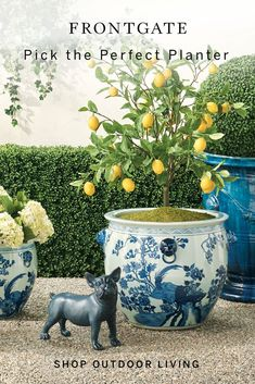 All-weather planters make it easy to add extra style and personality to your outdoor space. Shop now at Frontgate. Garden Urns, Garden Yard Ideas, Lawn And Garden, Spring Garden, Front Porch Landscape, Front Yard Landscaping, Outdoor Planters, Outdoor Gardens, Outdoor Decor