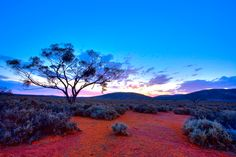 Outback Dusk Image - Pro Photo HOME