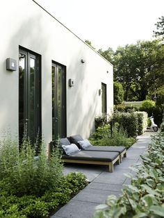 Mix of herbs and lush green foliage against dark charcoal pavers - neat and pleasuring space to occupy