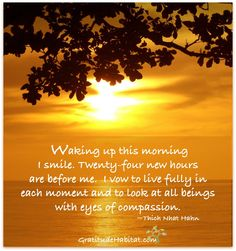 Waking up this morning, I smile.   Visit us at: www.GratitudeHabitat.com #Thich-Nhat-Hahn #Good-morning #Gratitude-Habitat