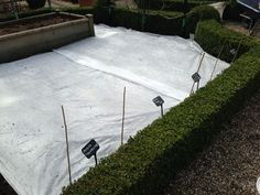 Potatoes Planted and covered with Fleece http://www.harrodhorticultural.com/garden-fleece-30gsm-pid7516.html