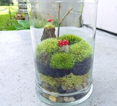 This is a picture of a piece I custom ordered for my Mothers Day gift for myself :) great Etsy artist!  APPALACHAIN MEMORIES Moss Terrarium Glass by NatureandWoodland, $45.00