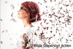Birds Dispersion Action by ArtPlanet on @creativemarket