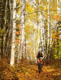 Mountain Biking along the #Mainehuts trails