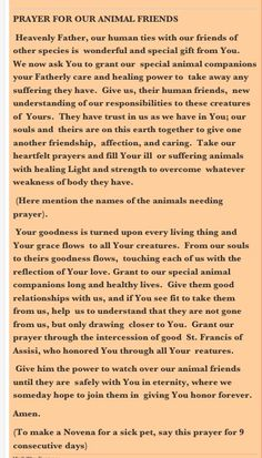 prayer for animals. St Francis of Assisi My sweet little Tanner
